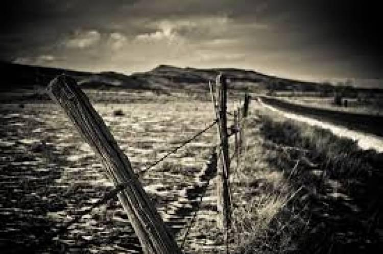 The Broken Hedge